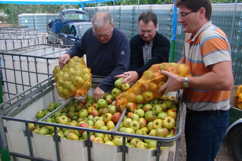 Réception des pommes